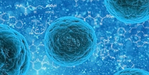 AstraZeneca ML cell identification project