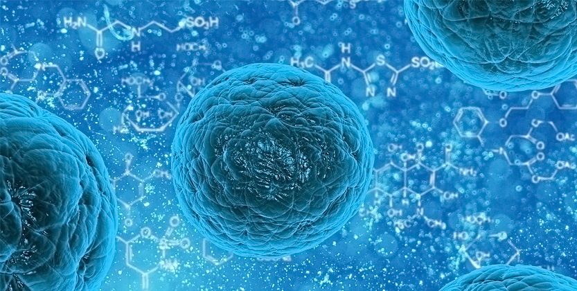 Read more about the article AstraZeneca ML cell identification project